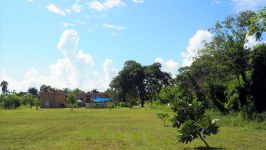 Property - Beautiful 3/4 Acre Cleared Land