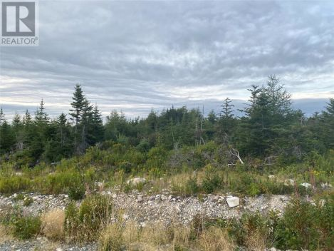 0 Courtney Road, Roaches Line/ Goulds Ridge Road, Newfoundland and Labrador
