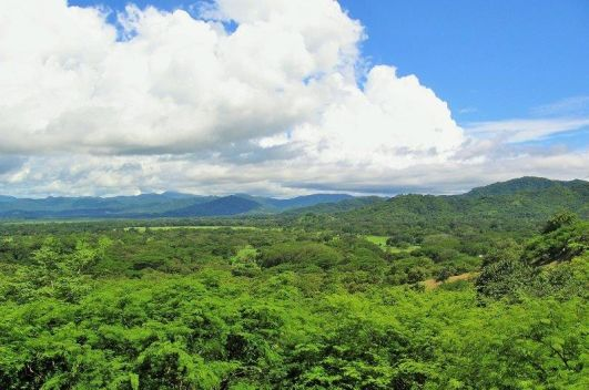 Rancho Cartagena Lots - Starting at $50K, Portegolpe, Guanacaste