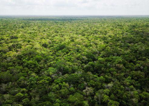 Parcela N7, Tulum, Quintana Roo