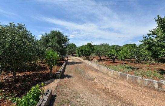 C.da Martucci, Ostuni, Brindisi