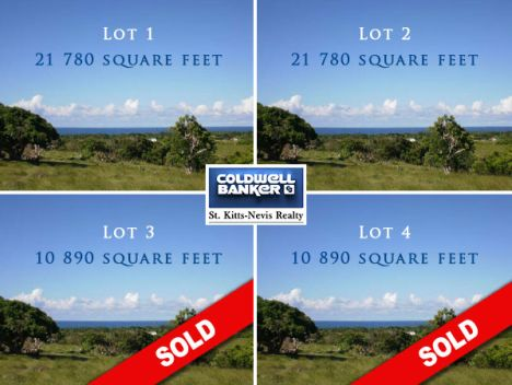 1.5 ACRE DIVIDED IN 4 LOTS, SHAWS ESTATE, NEVIS, Newcastle, Shaws Road