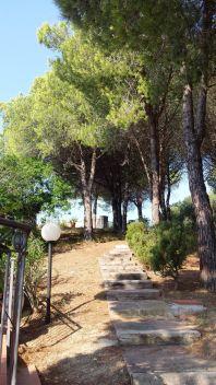 via dei Forcioni, Campo nell'Elba, Livorno