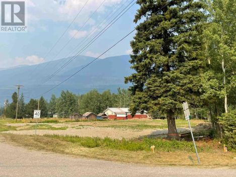 790 AIRPORT ROAD, Robson Valley (Zone 81), British Columbia