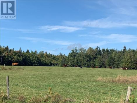 Lot Route 465, Fords Mills, New Brunswick