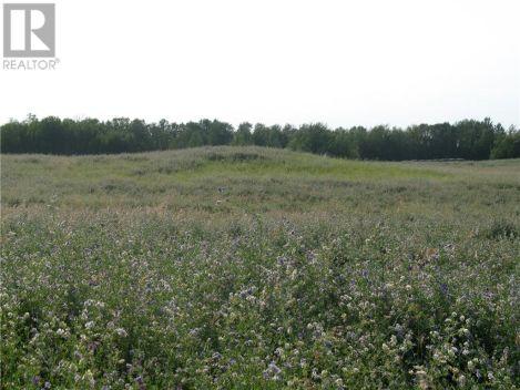 Meath Park Farmland, Paddockwood Rm No. 520, Saskatchewan