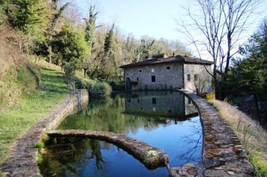 , Borgo San Lorenzo, Firenze
