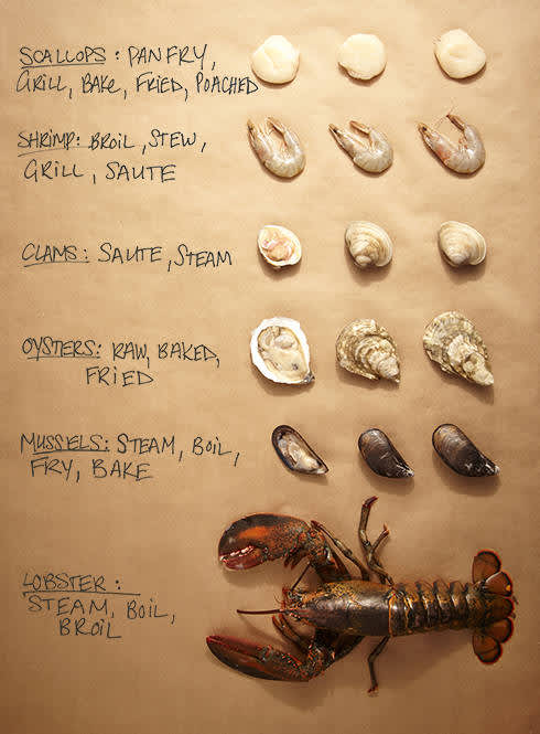 How to Select and Prepare Shellfish — P&G everyday | P&G