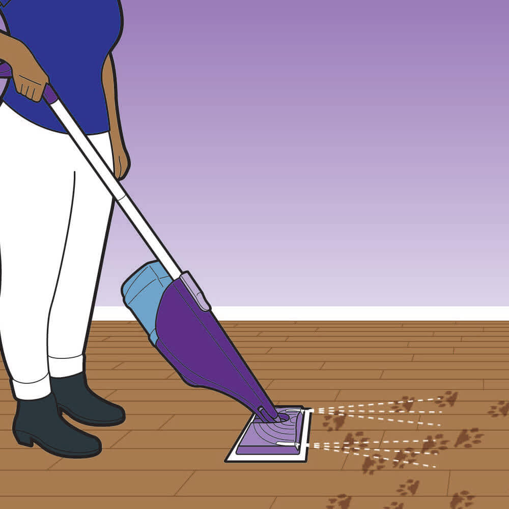 How to Reduce and Stay on Top of Pet Messes
