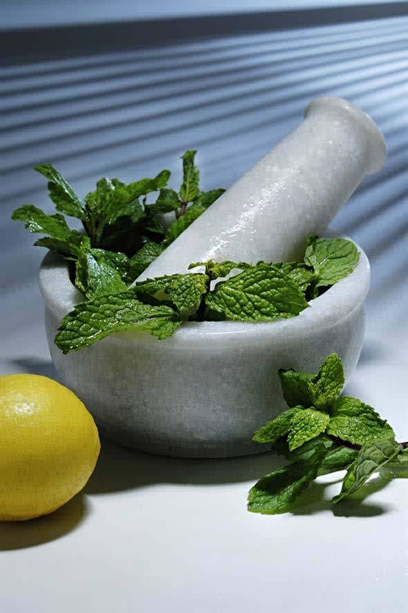 5 Different Ways To Use Mint Leaves For Better Skin