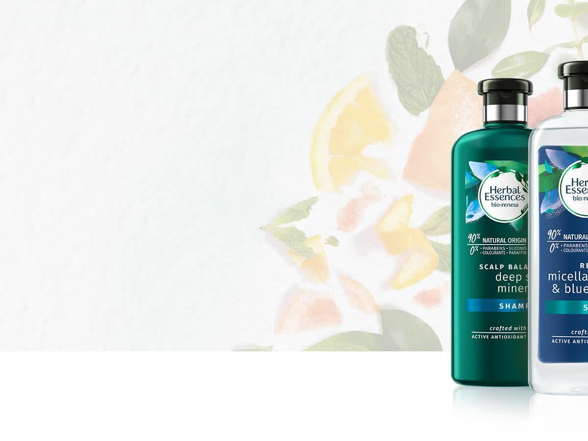 graphic regarding Herbal Essence Printable Coupons identify Natural Essences PG Day-to-day