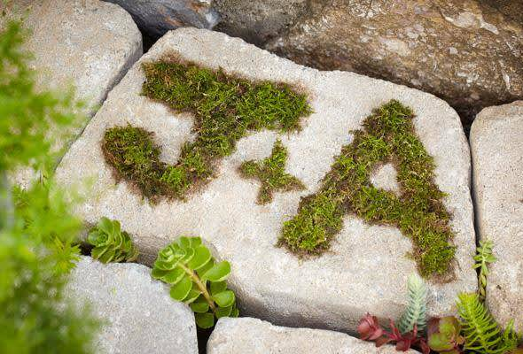 How To Make Moss Paint P G Everyday P G Everyday United States