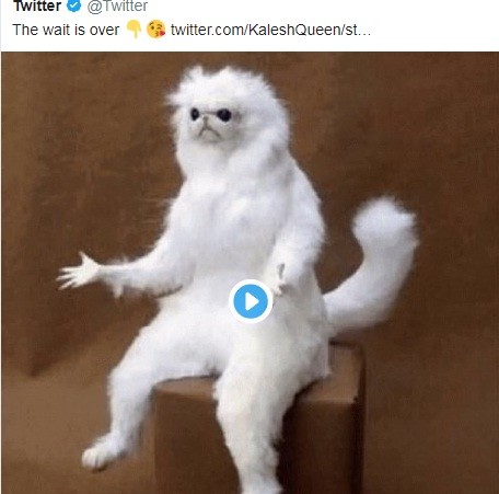 تويتر تسمح لمستخدميها بنشر صور متحركة مع تصميم جديد