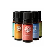 Mr Steam oils