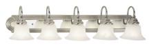 Livex Lighting 1005-95