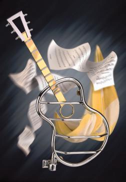 Wesaunard Guitar image-1