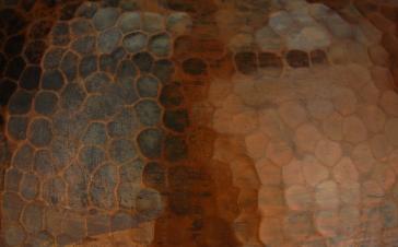 Premier Copper L500DB image-3