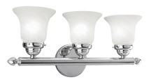 Livex Lighting 1063