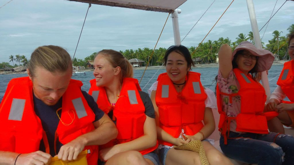 Apo island sea turtle 2018-2