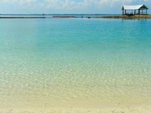 cebu bohol tour beach