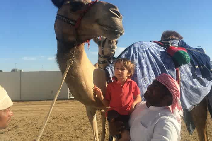 Al Marmoom Camel Racetrack