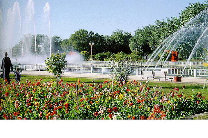 Al Ain Ladies Park
