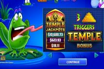 Frogs N Flies: Temple Cashs