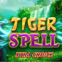 Tiger Spell Xtra Choice