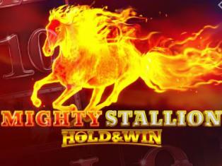 Mighty Stallion
