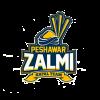 Peshawar Zalmi Cricket Logo