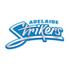 Adelaide Strikers Women Cricket Logo
