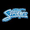 ADSW Cricket Logo