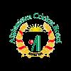 Afghanistan Cricket Logo