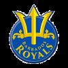 BR Cricket Logo