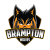 Brampton Wolves Cricket Logo