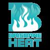BHW Cricket Logo