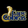 COB Cricket Logo