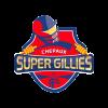 CSG Cricket Logo