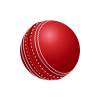 Delhi Bulls Cricket Logo