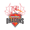 Dindigul Dragons Cricket Logo