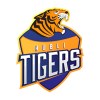 Hubli Tigers Cricket Logo