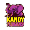 Kandy Tuskers Cricket Logo