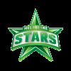 MLSW Cricket Logo