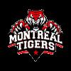 Montreal Tigers Cricket Logo