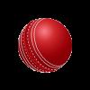 Munster Reds Cricket Logo
