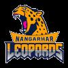 Nangarhar Leopards Cricket Logo