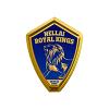 Nellai Royal Kings Cricket Logo