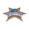 NMBG Cricket Logo
