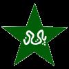 पाकिस्तान  क्रिकेट लोगो