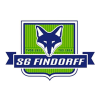 SG Findorff Cricket Logo